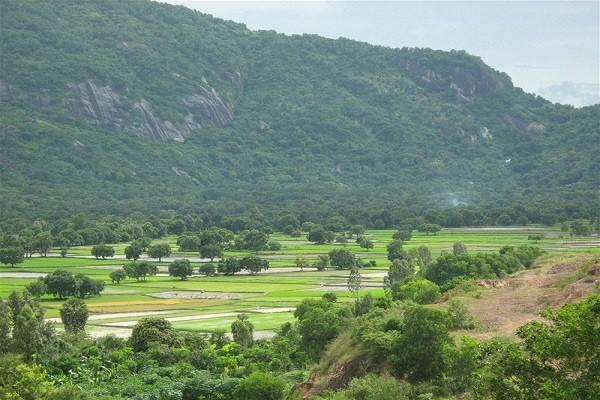Interesting mountain climbing in Vietnam for mountain climbers (P.2)